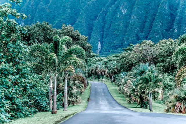 Browse and Download Hawaii Trails